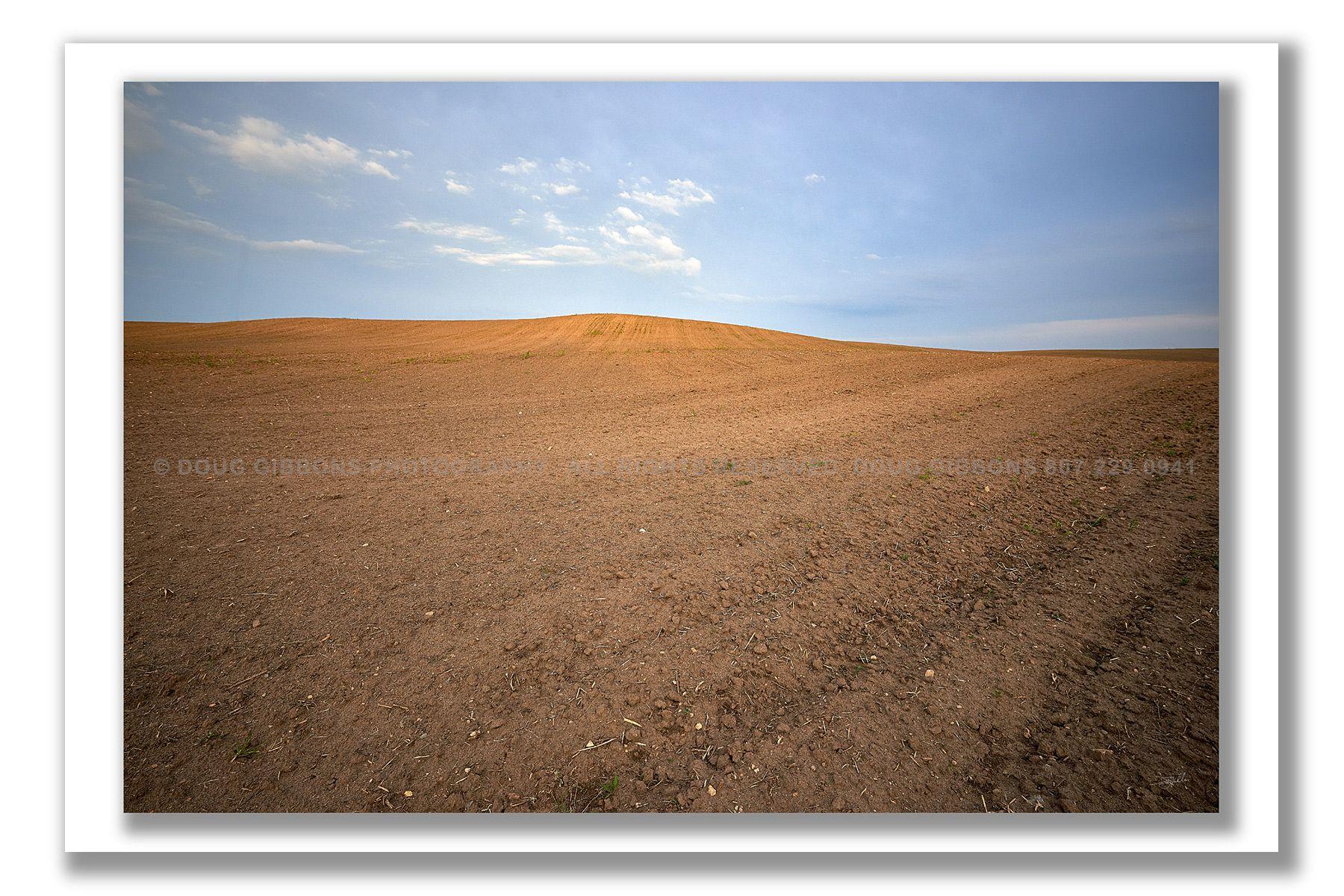 Desolate-