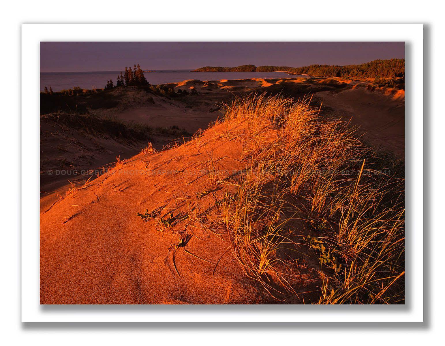 Crimson Dunes