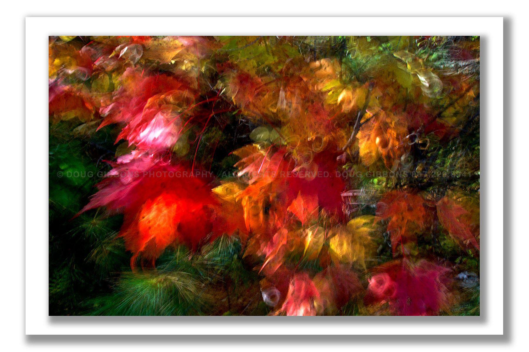 Autumn Flury