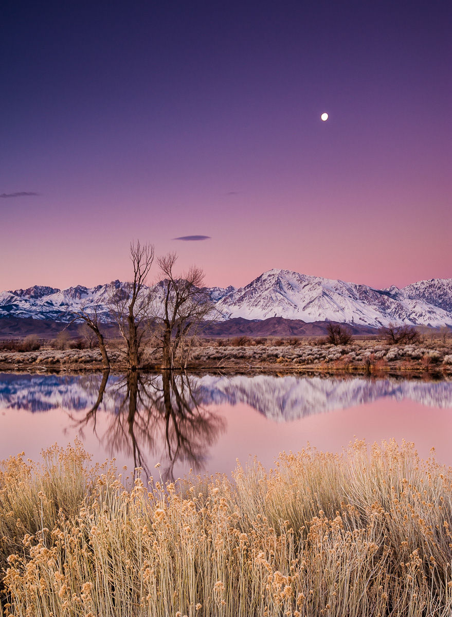 Full Moon and Mountains Reflected in an Eastern Sierra Pond at Sunrise