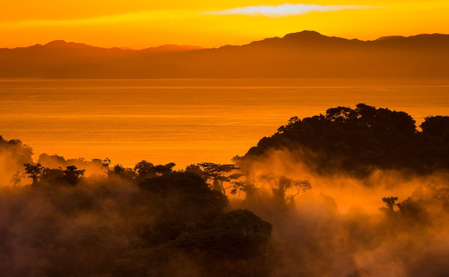 Sunset and Glowing Mist over Rain Forest