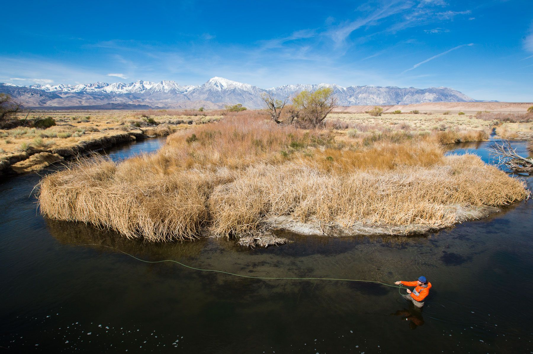 Early Morning Fly Fishing on the Owens River