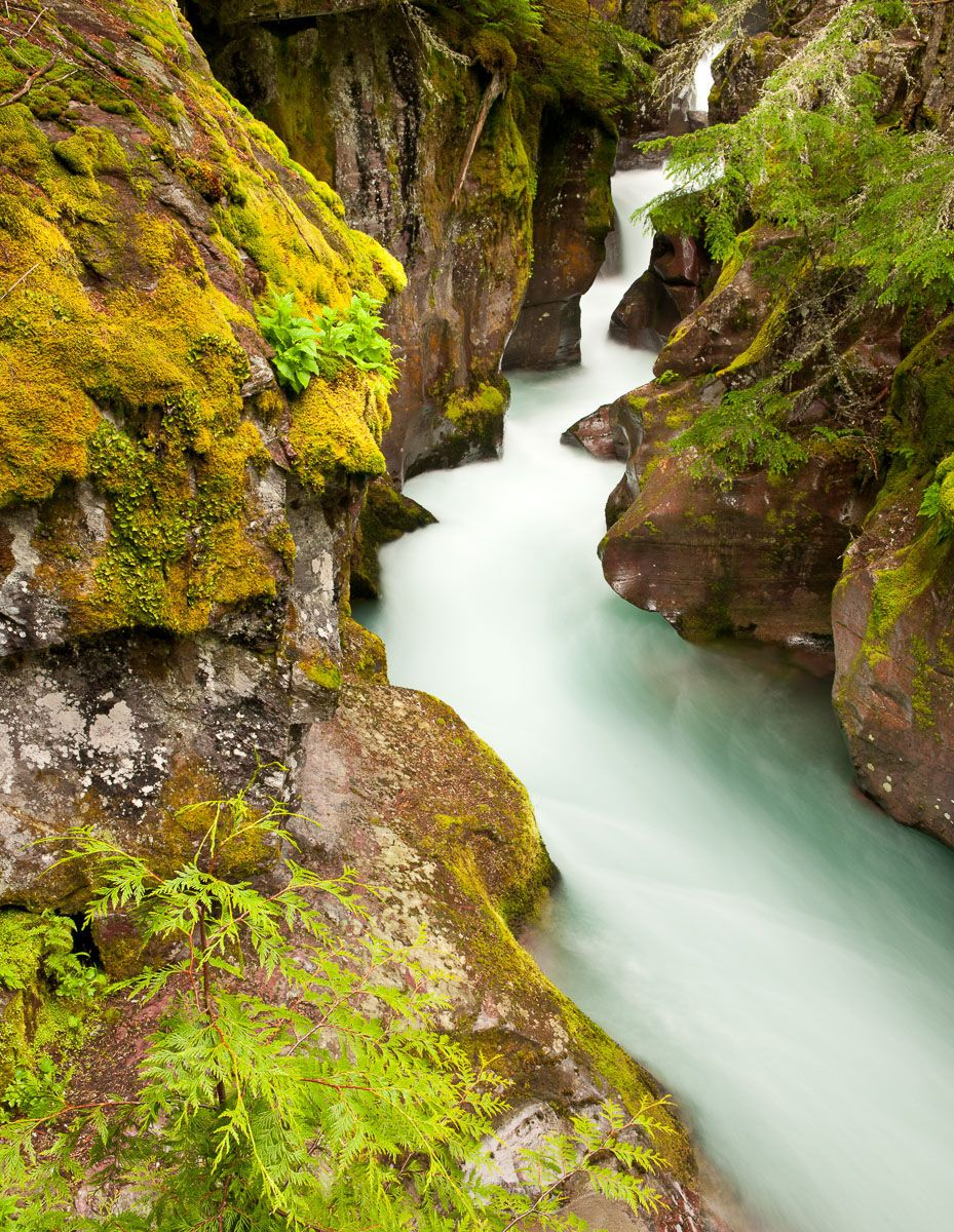 Flowing water of Avalanche Creek