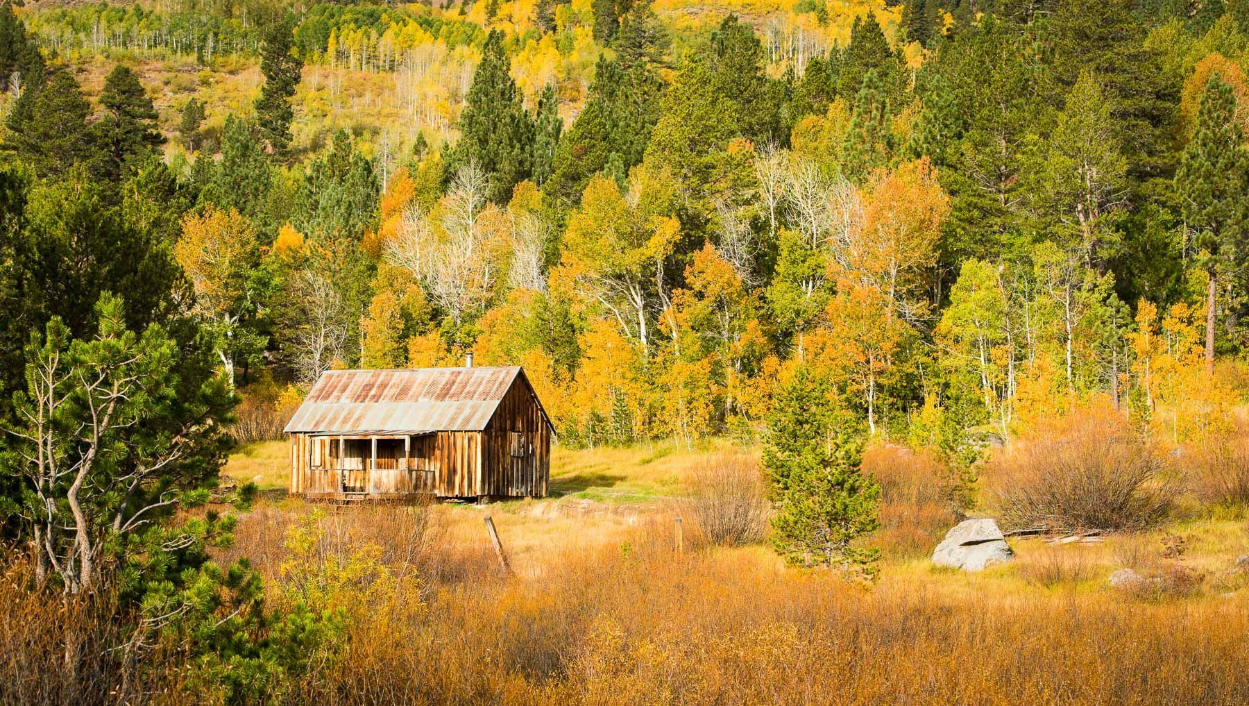 Old Cabin and Fall Colors
