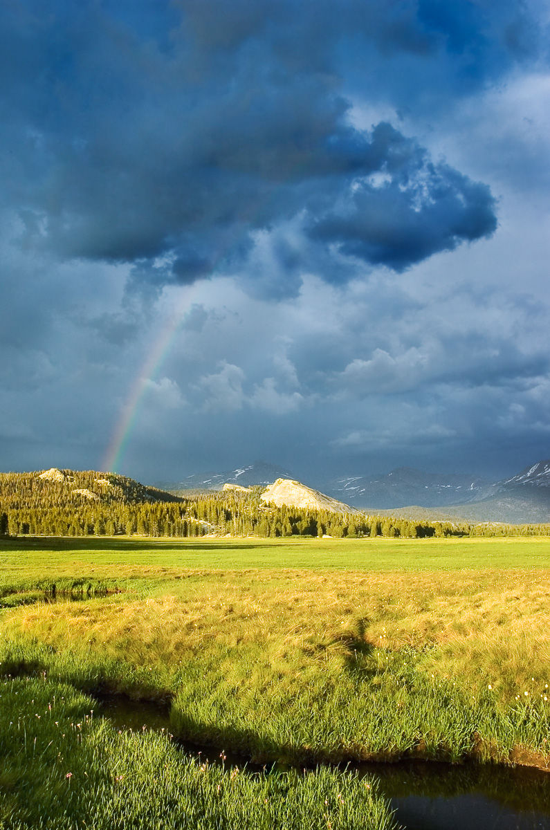 Rainbow in the Midst of a Summer Thunderstorm over Tuolumne Meadows