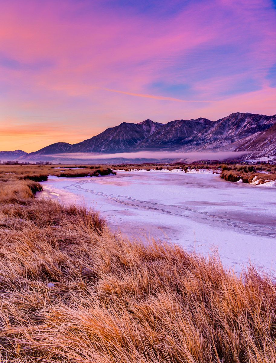 Grass and Frozen River at Sunrise
