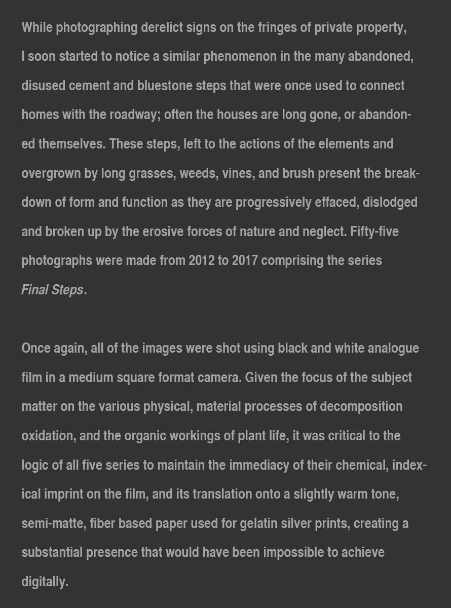 Final_Steps_Artist_Statement_2018_website.jpg