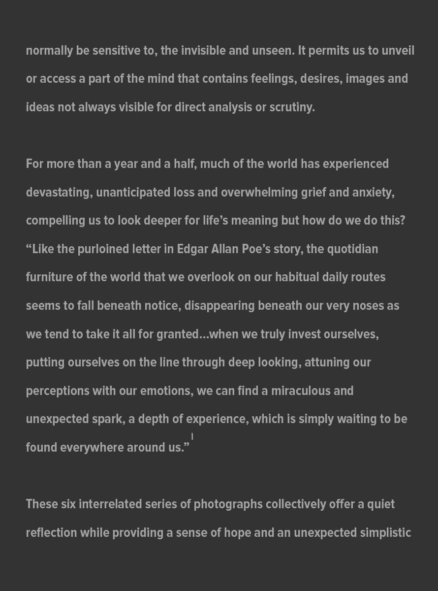 Big-Picture-Artist-Statement_Page_-2_July_31_2021.jpg