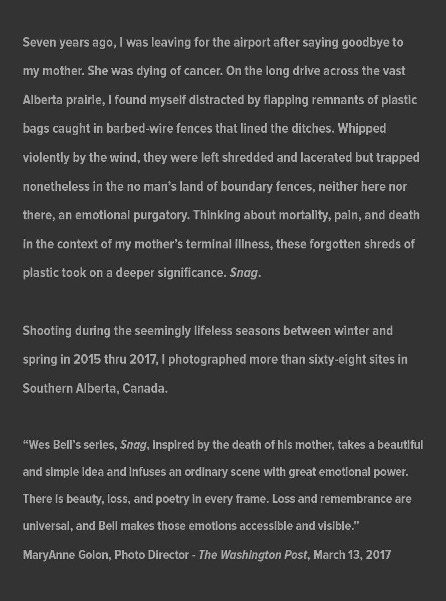 Snag_Artist_Statement_website_July_-31_2021.jpg