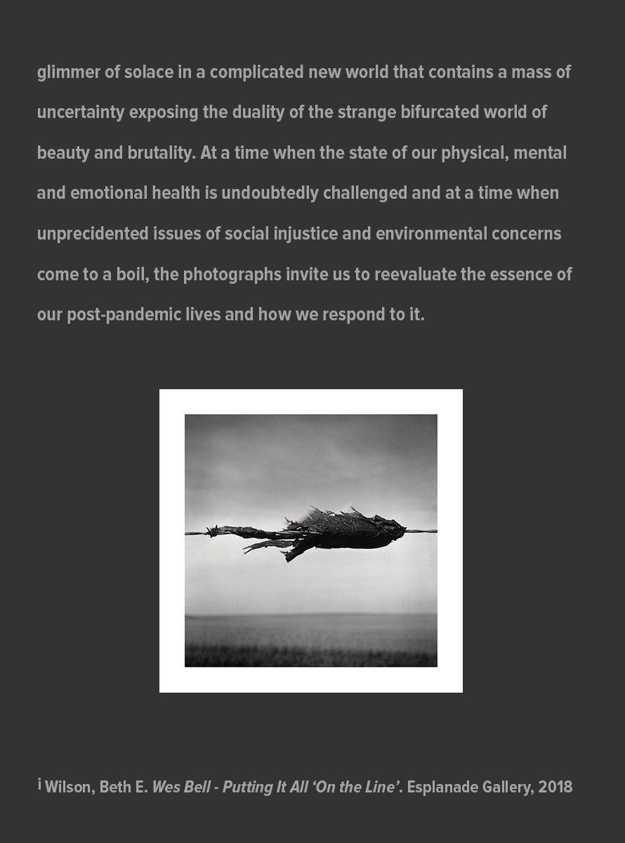 Big-Picture-Artist-Statement_Page_-3_July_31_2021.jpg