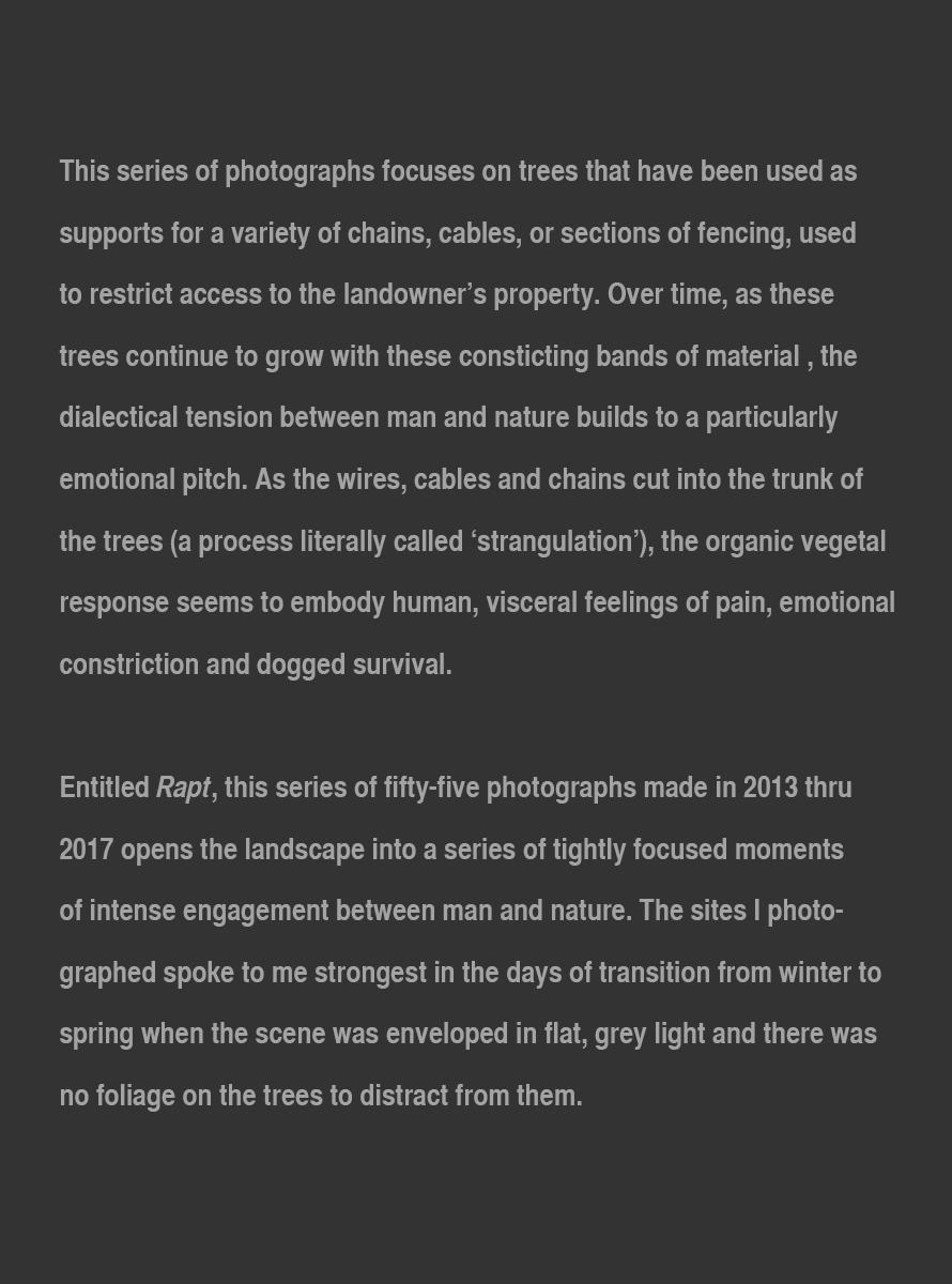 Rapt_Artist_Statement_website_Update_Nov_2017.jpg