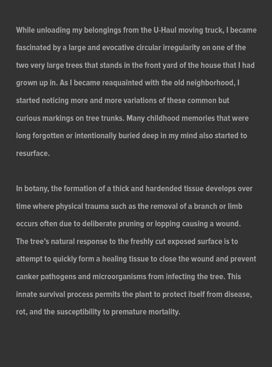 Callus_Artist_Statement_website_July_31_2021_page_1.jpg