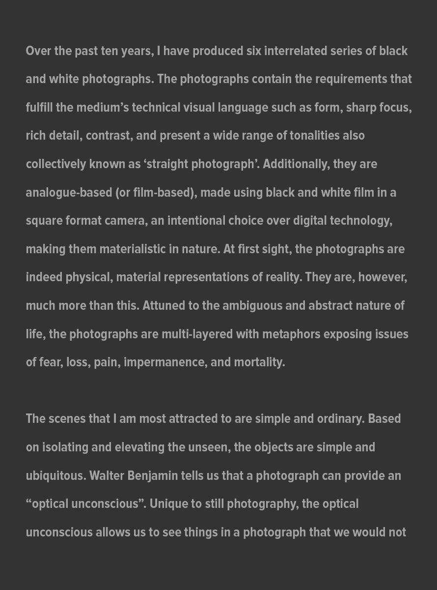 Big-Picture-Artist-Statement_Page_1_July_31_2021.jpg