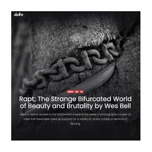 Dodho_Rapt_Website.jpg