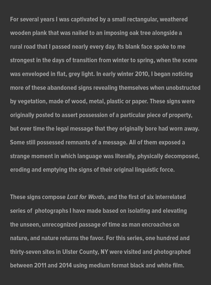 Lost_For_Words_Artist_Statement_website_July_31_202.jpg