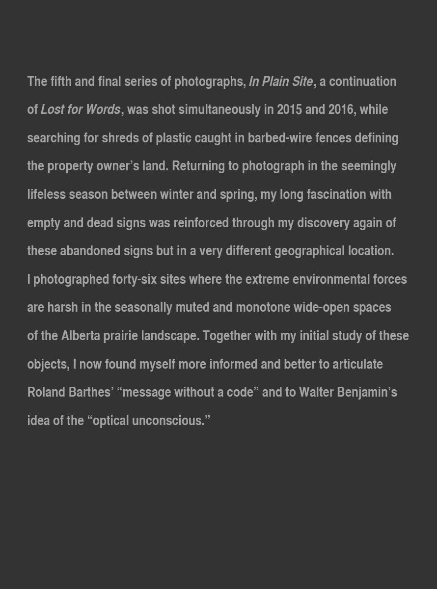 In_Plain_Site_Artist_Statement_Update_Nov_2017_website.jpg