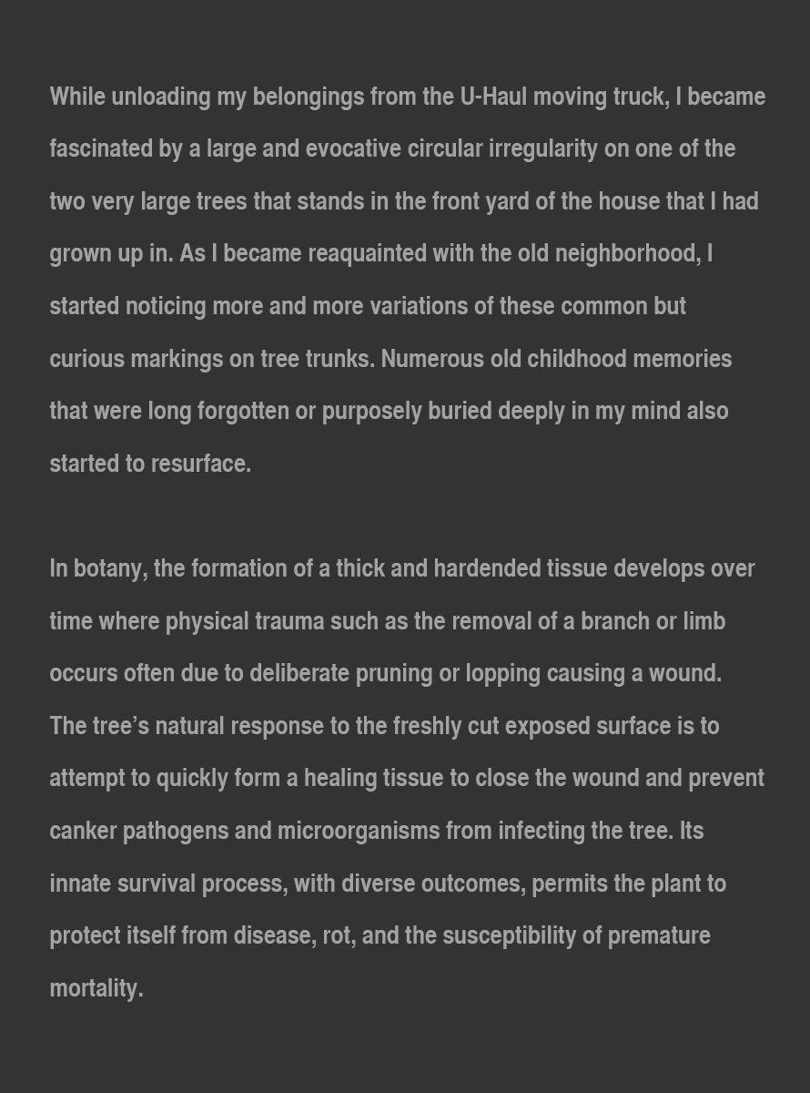 Callus_Artist_Statement_Sept_22_2020_page_1.jpg