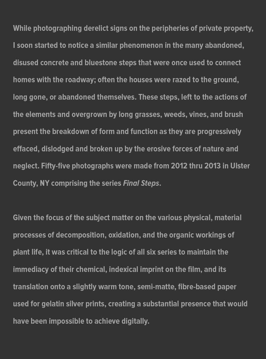 Final_Steps_Artist_Statement_website_July_31_2021.jpg