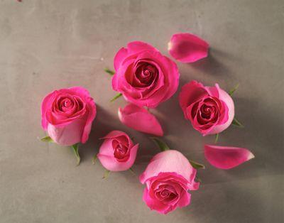 Vinnie-Flowers1.jpg
