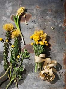 Prop styling by Lauren Niles. Photography by Kate Kelley