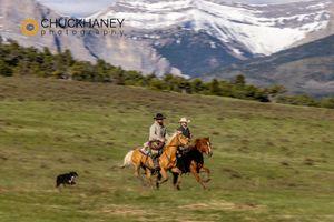 Cowboy-Front-Range_063-507.jpg