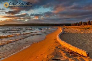 Sand-Point-Driftwood_001-406.jpg