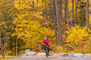 Whitefish Road Bike Autumn