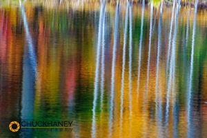 Marquette-Pond-Reflect_014-498.jpg