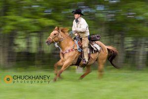 Lee Ranch Cowboy