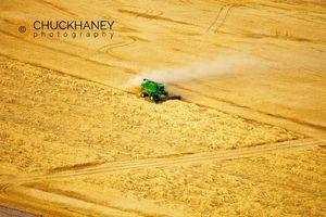 Palouse Harvest Aerial