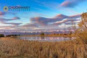 Lower-Valley-Wetlands_006-492.jpg