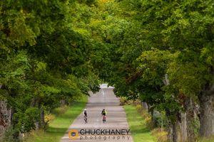 Glen Arbor bike