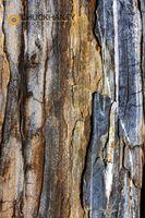 Pemaquid-Lighthouse_018-508.jpg