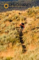 Mtn biking on Nip and Tuck singletrack