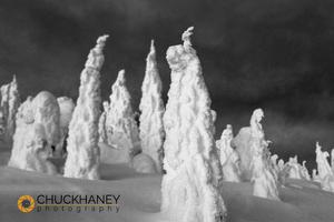 Snowghosts_059-bw-blur-444.jpg