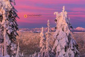 Snowghosts_alpenglow_011_copy.jpg