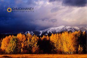 Big Mountain Stormy