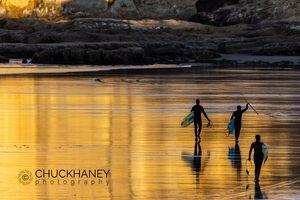 Cape-Kiwanda_010-505.jpg