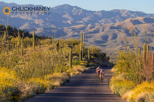 Saguaro Road bike
