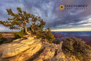 Grand-Canyon-NP_017-copy.jpg