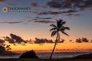 Poipu-Beach_003-488.jpg