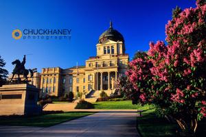 Lilacs at Capitol