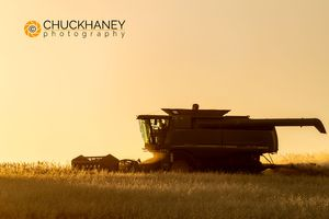 Flathead-Wheat-Harvest_006-496.jpg