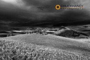 Haystack-Butte_009bw-493.jpg
