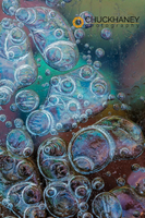 Ice-Bubbles_004-415.jpg