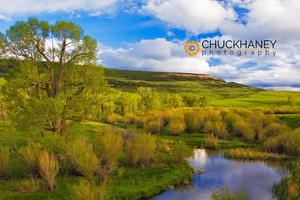 Judith River Utica