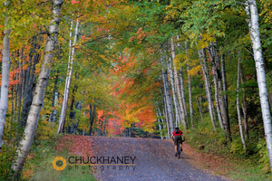 Mtn biker along gravel road with autumn color