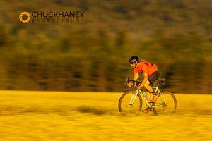 Canola-Road-Bike_059-495.jpg