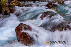 Avalanche-Creek_019-482.jpg