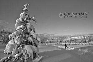 Whitefish Cross Country Ski